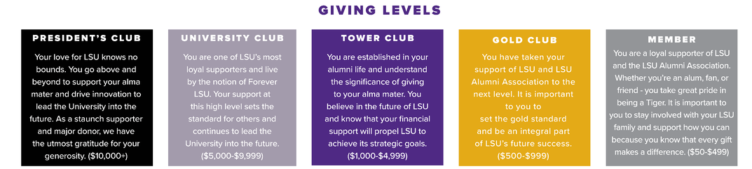 Giving Levels Graphic