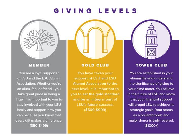 Giving Levels Graphic_no rewards line at bottom