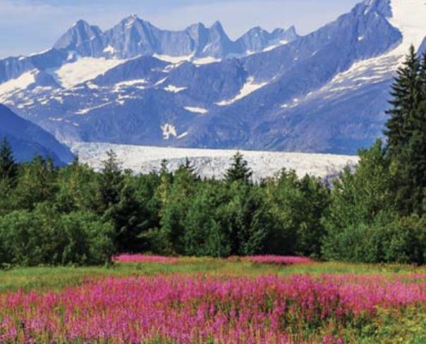 Glacial Adventures of Alaska with LSU Alumni Tours