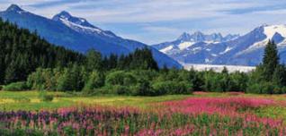 Stunning Scenery Alaska